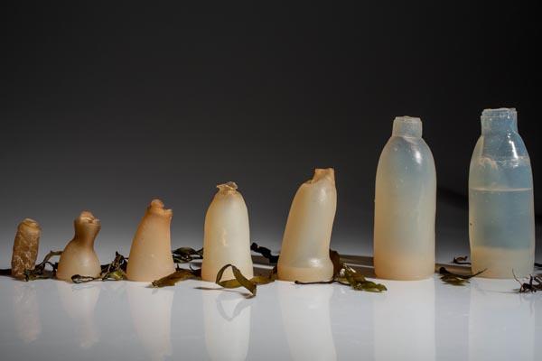 Бутылка из водорослей — гениальная альтернатива пластику