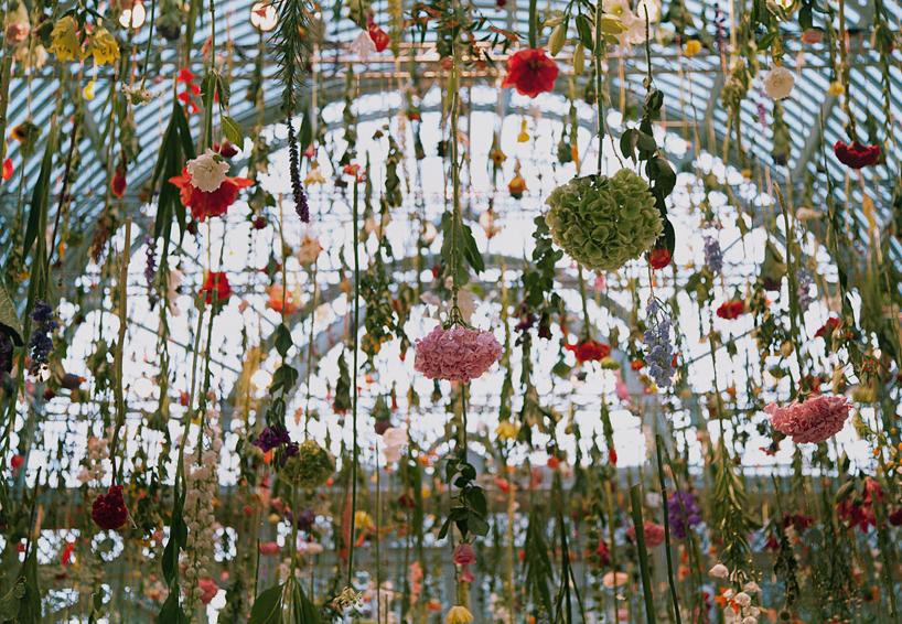 Инсталляции из цветов, Ребекка Луиз Лоу, Rebecca Louise Law