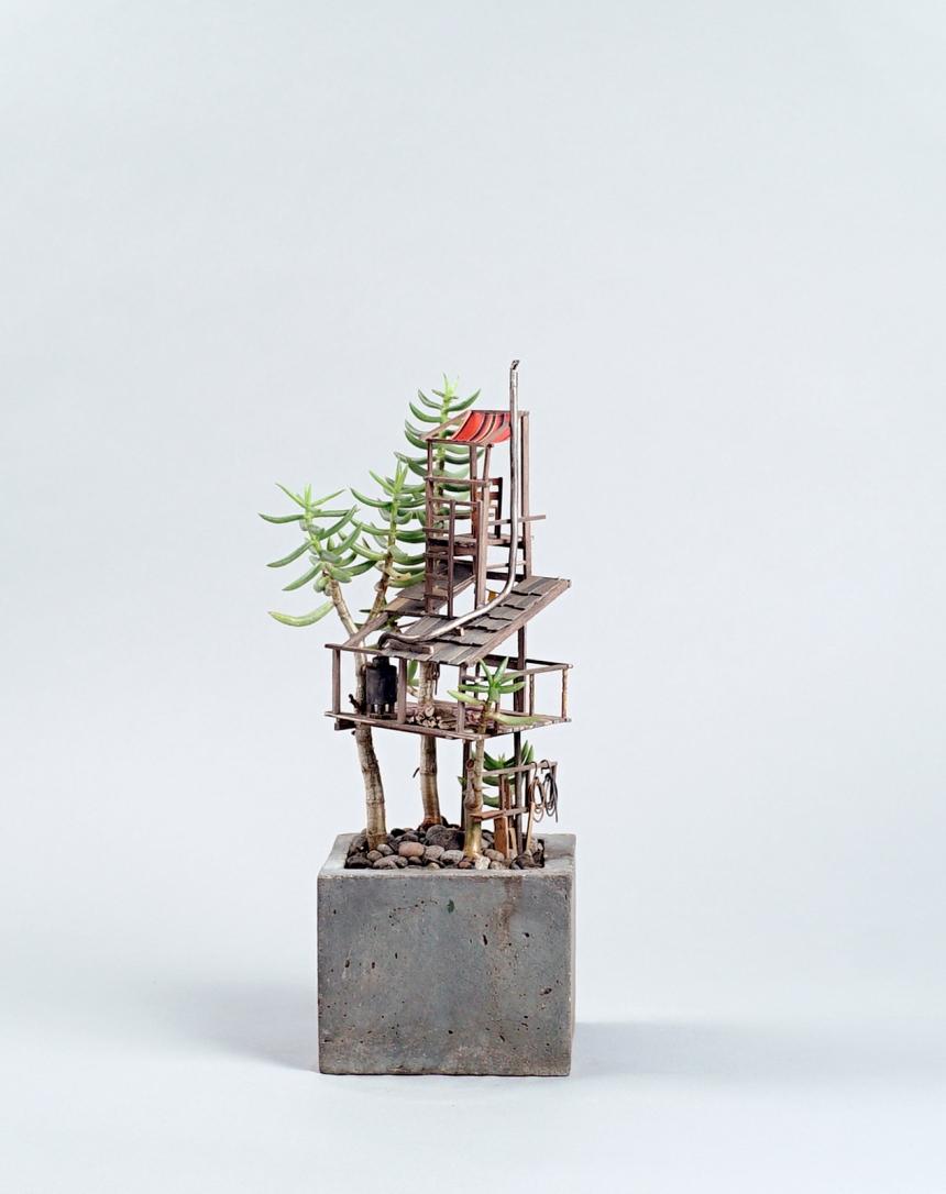 Скульптуры, комнатные растения, Джедедайя Корвин Вольтц, Jedediah Corwyn Voltz