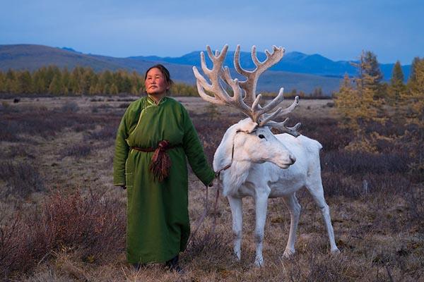 Великолепие кочующего народа цаатан в фотографиях Мадоки Икегами