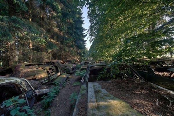 Загадочное кладбище автомобилей в Бельгии