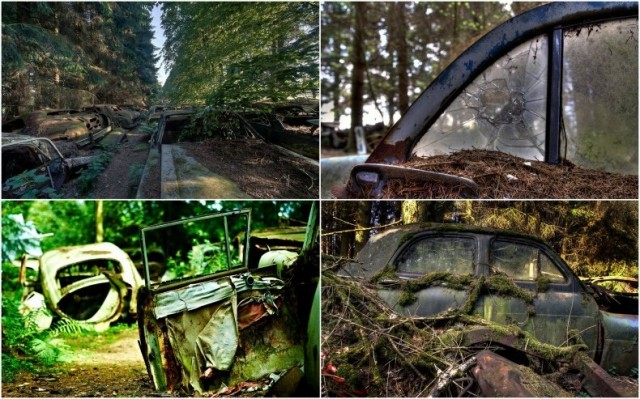 Кладбище автомобилей в Бельгии.