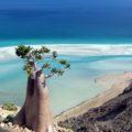 Socotra-мини