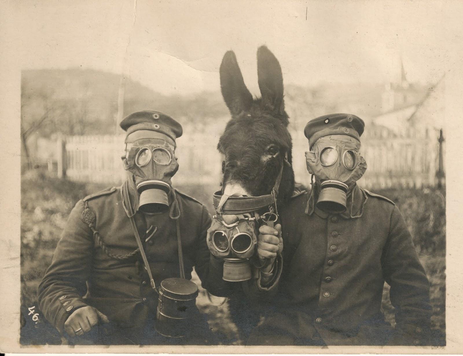 Коллекция редких исторических фотографий