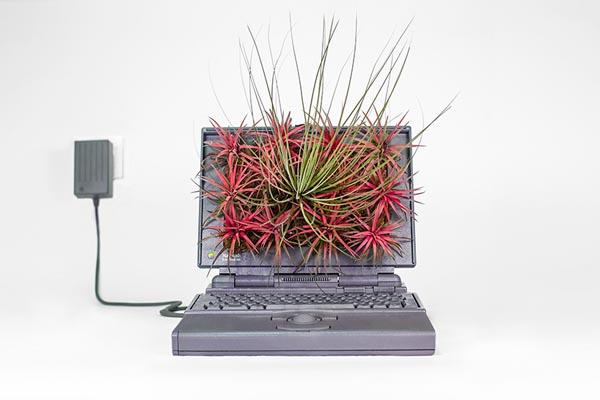 Винтажные компьютеры в виде цветочных горшков от Кристофа Гине