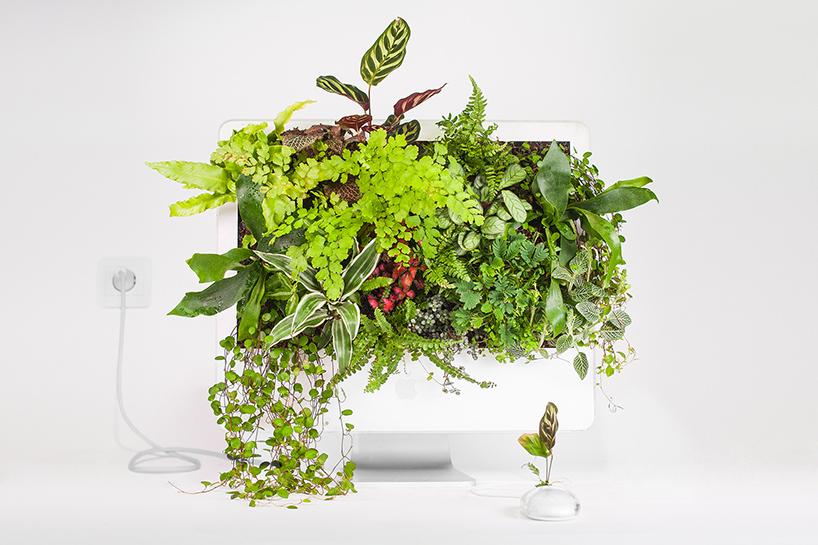 цветочные горшки из компьютеров, Plant your mac, Кристоф Гине, Christophe Guinet