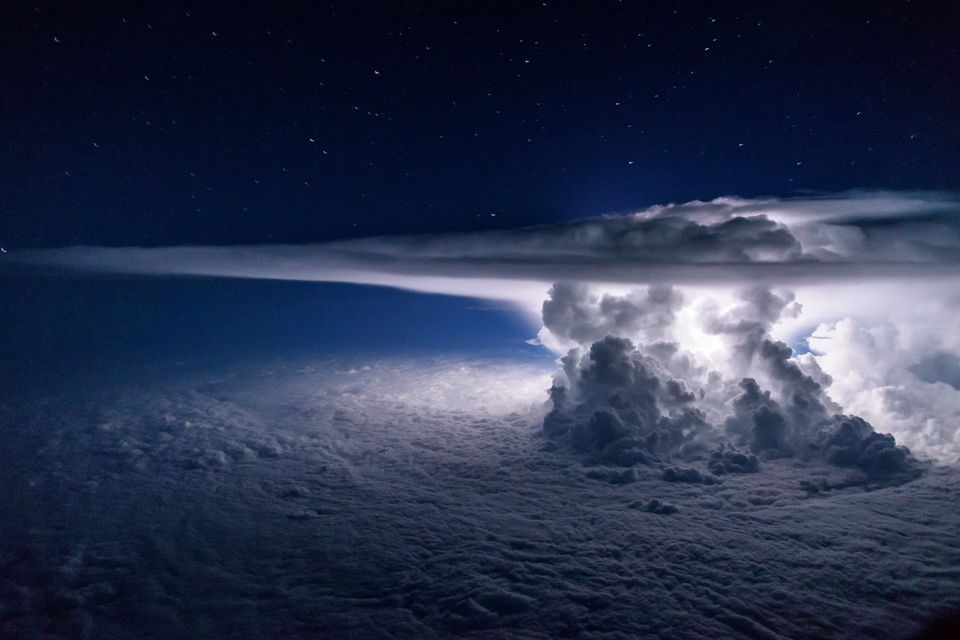 конкурс фотографии природы, National Geographic 2016