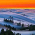 Сочные пейзажи Сан-Франциско от фотографа Николаса Стейнберга
