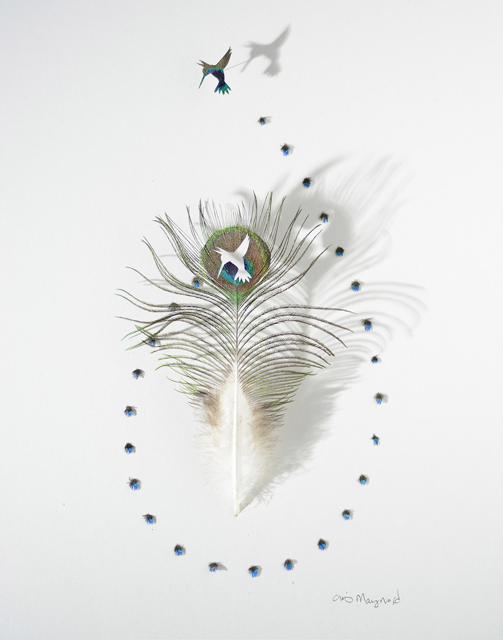 произведения из перьев, Крис Мэйнард, Chris Maynard