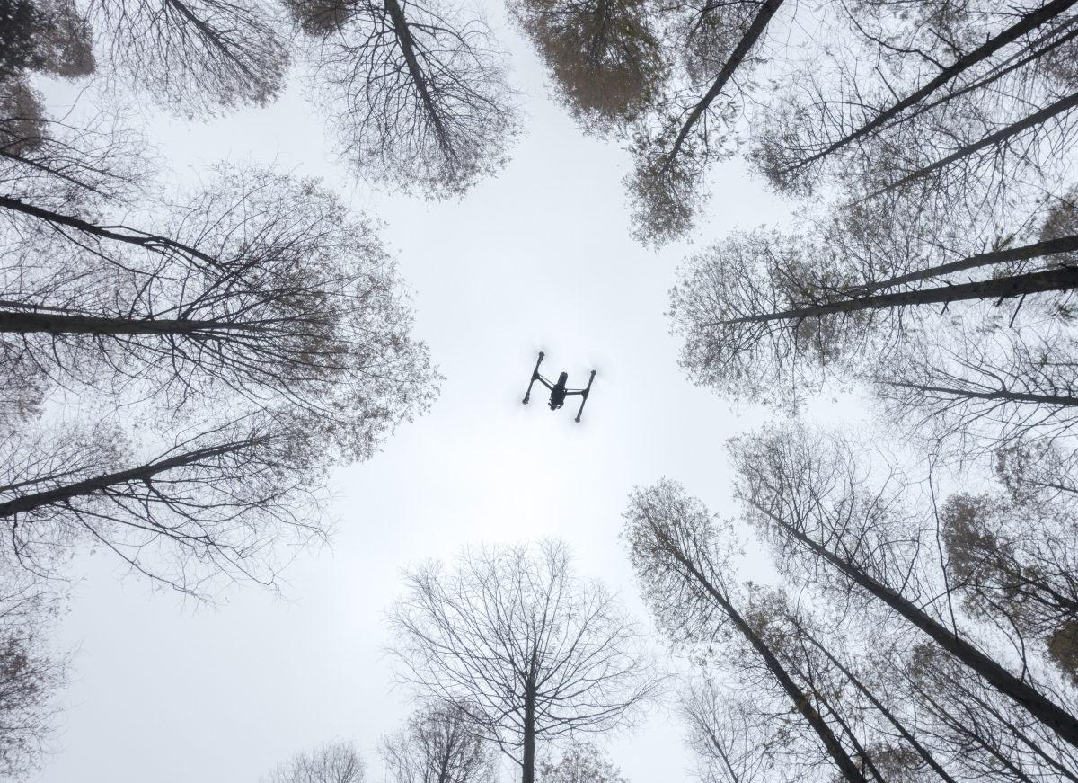 Конкурс фотографий SkyPixel 2016