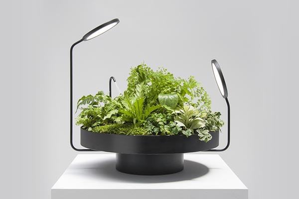 Эксклюзивные вазы со светодиодами от студии Goula / Figuera