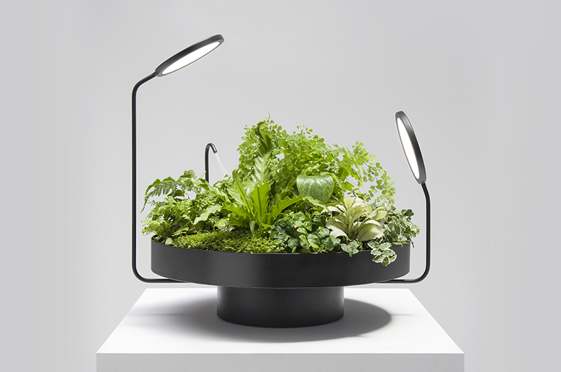 вазы со светодиодами, Goula / Figuera