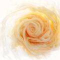 Flowers and Swirls: цветы из красителей в фотосерии Марка Моусона
