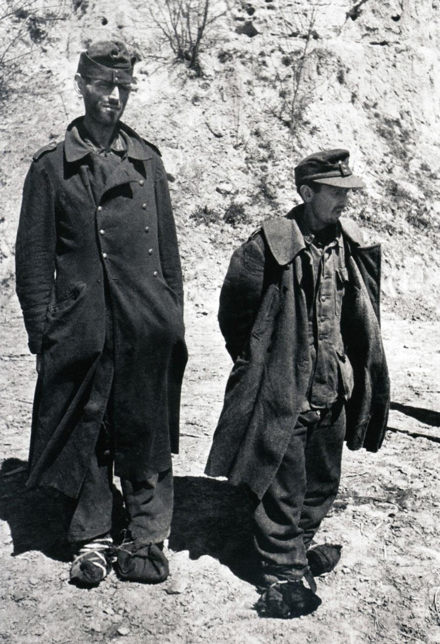 Пленные, 1943 год