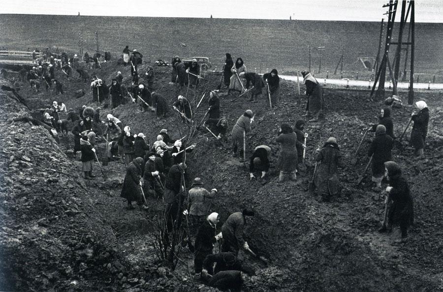 Рытье противотанковых рвов под Москвой, 1941 год