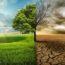 20 тревожных фактов о глобальном потеплении
