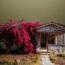 Атмосферная архитектура пустынь США в фотографиях Эда Фримена