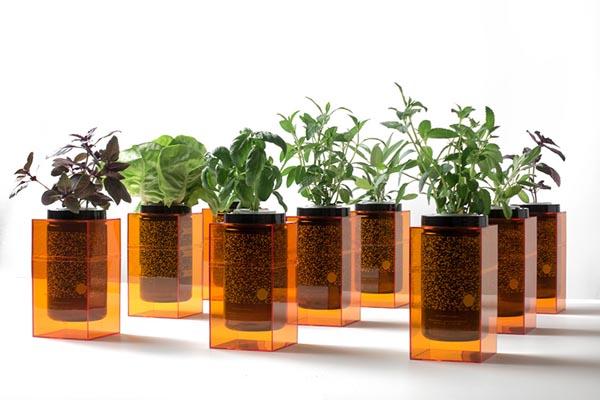 Spacepot: домашние плантаторы для выращивания зелени без хлопот
