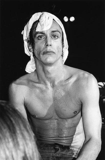 Игги Поп, 1977