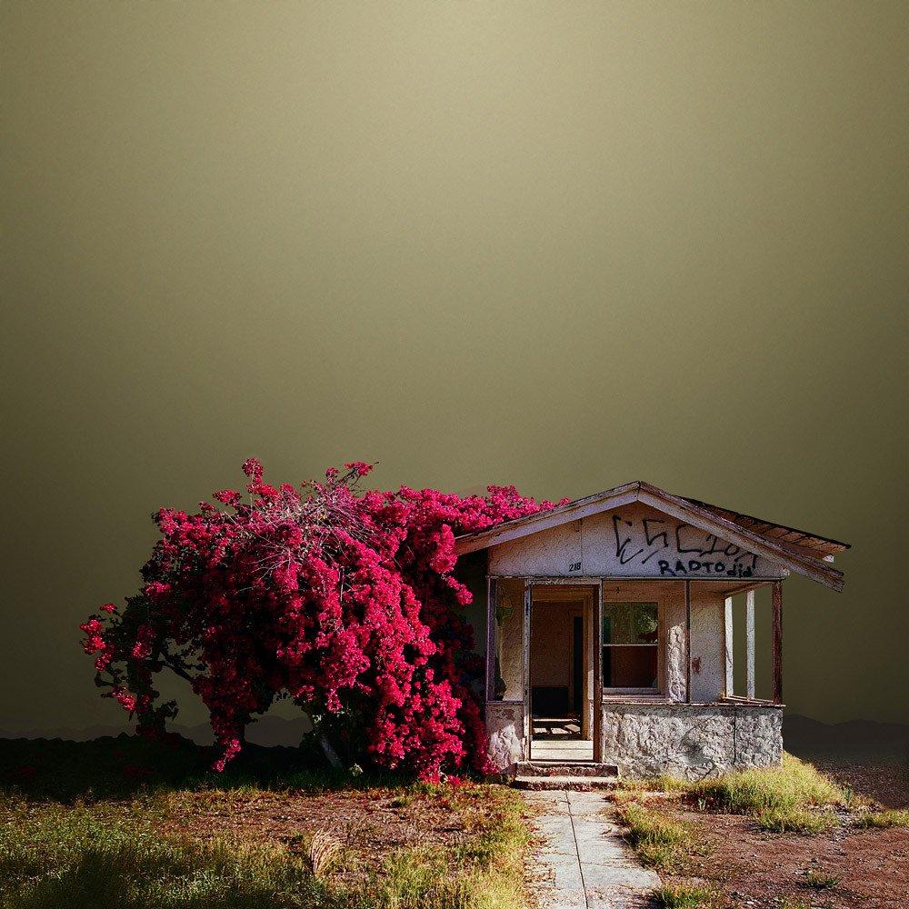 архитектура, пустыни США, фотографии, Эд Фримен, Ed Freeman