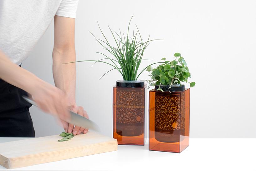Spacepot, Futurefarms, домашние плантаторы, выращивание зелени
