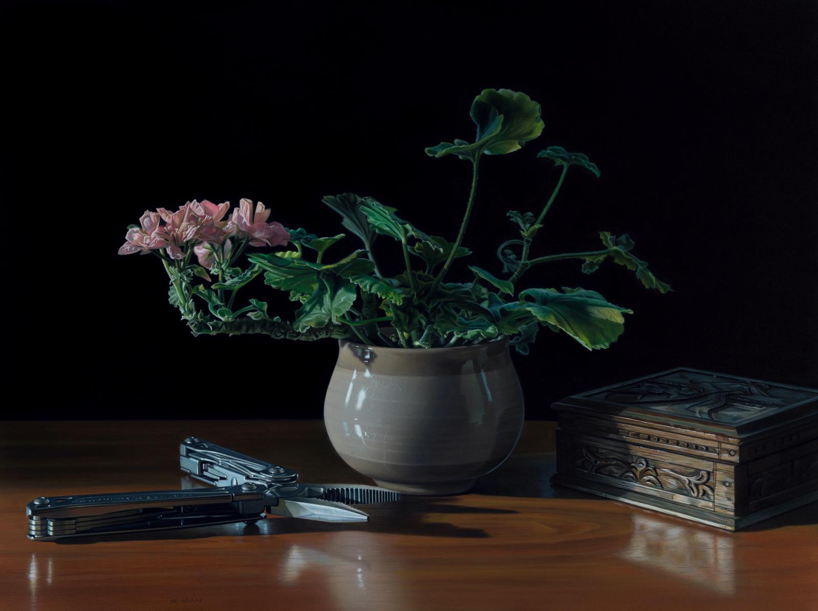 Гиперреалистичные натюрморты от Джейсона де Граафа