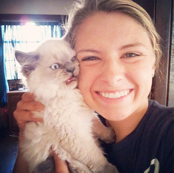 Коты, которые не любят селфи