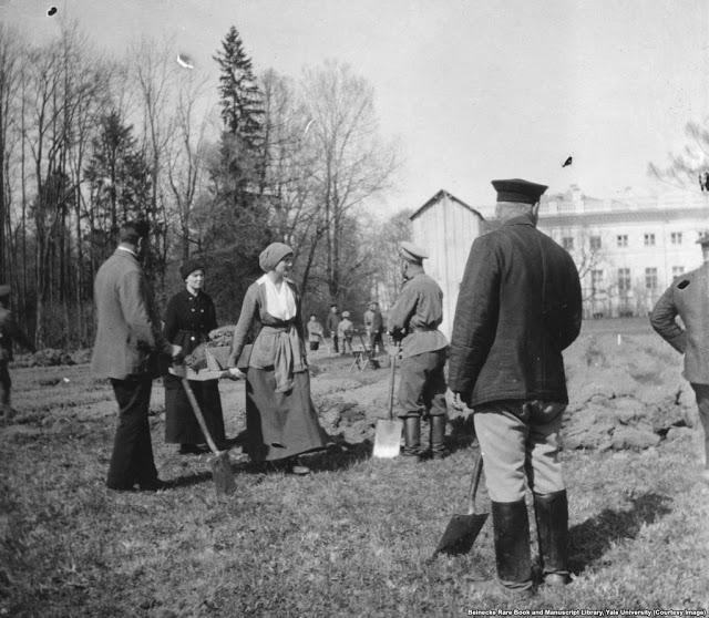 ВеликаякняжнаТатьяна (вторая дочьНиколая II) помогает рыть огород в месяцы послереволюции 1917 года