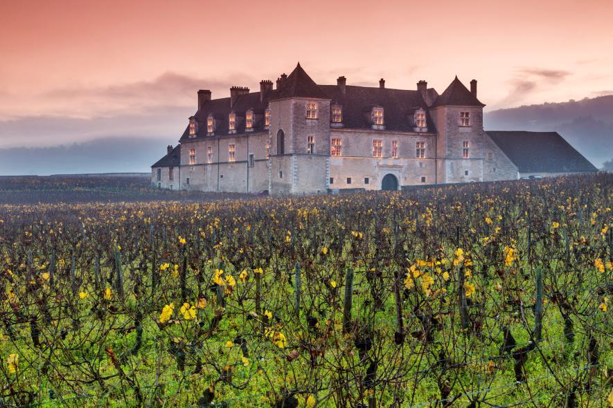 Замок Clos de Vougeot и виноградник в Бургундии, Франция
