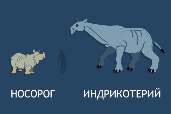 Размеры доисторической мегафауны по сравнению с современными животными