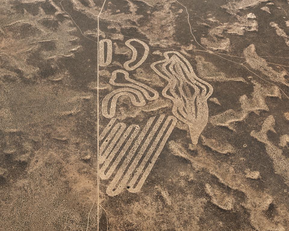 Необычные поля в ЮАР с высоты птичьего полёта