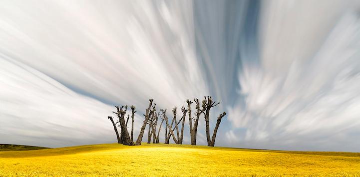 Живописные ландшафты в фотографиях Лизы Вуд