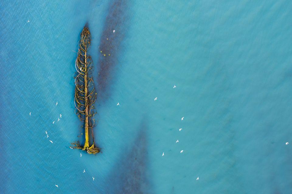 Высокая оценка в категории«Аэрофотография»: фотографAgathe Bernard