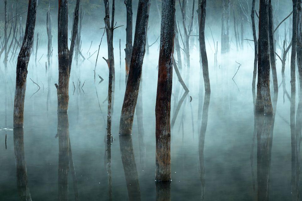 Высокая оценка в категории«Пейзаж»: фотографGheorghe Popa
