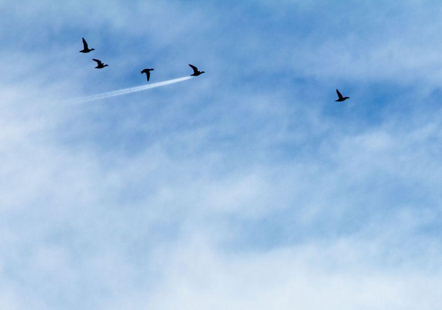 Победитель в категории «Небо»: фотографJohn Threlfall