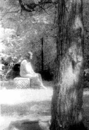 Призрак кладбища Бакалаврской рощи