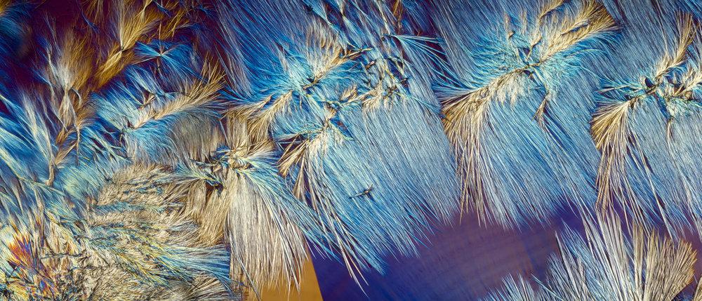 Ментол под микроскопом