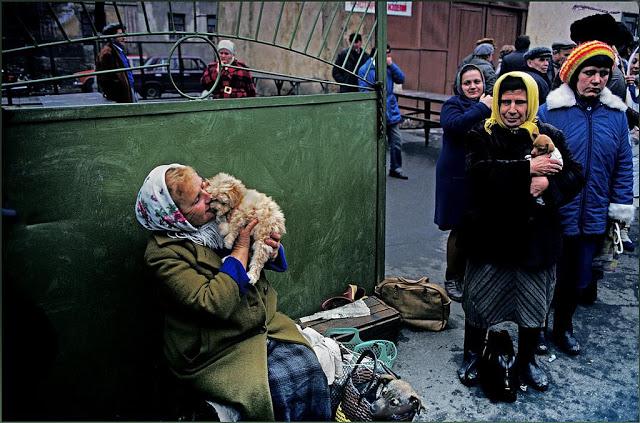 Женщина на рынке животных