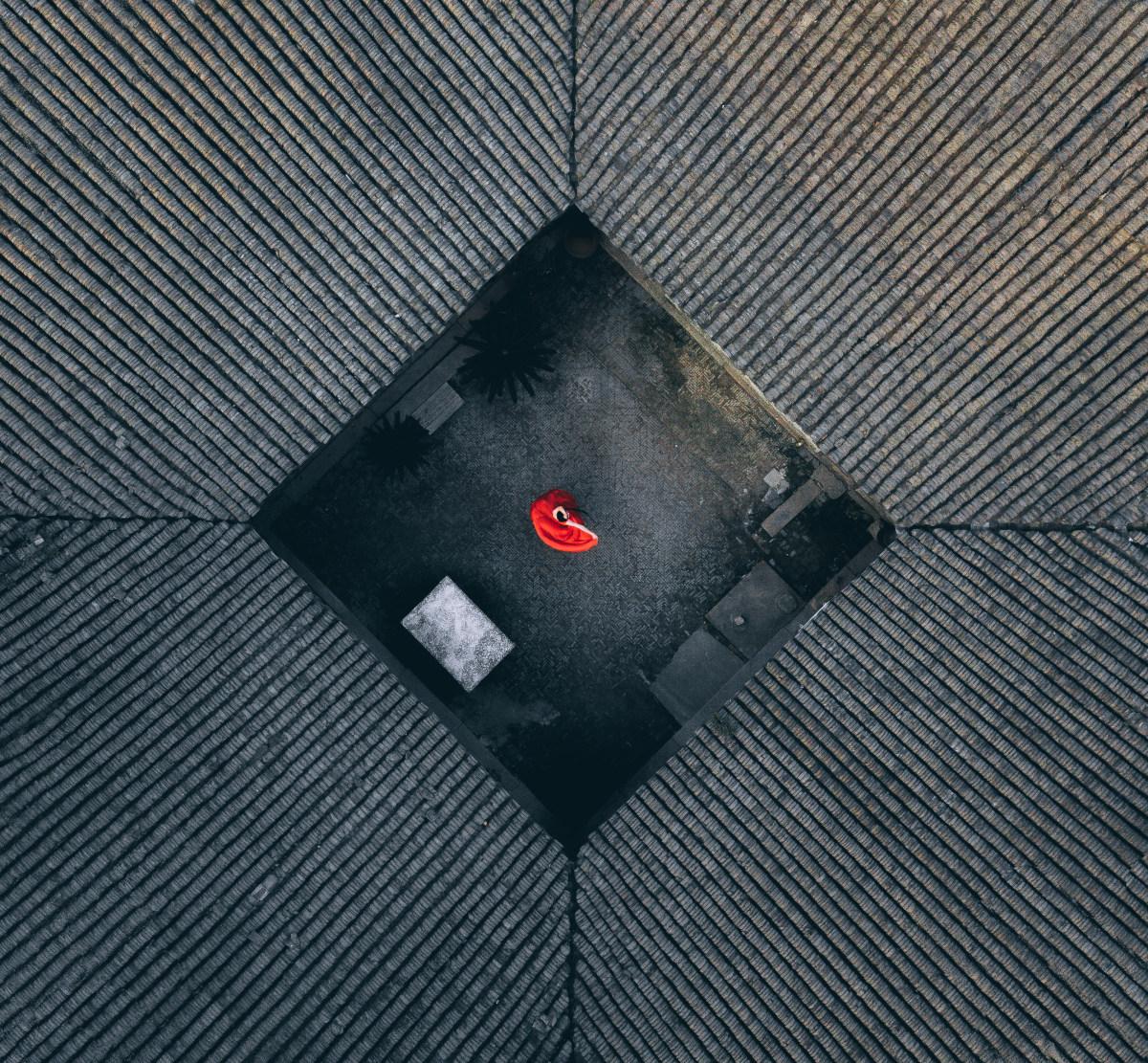 1-е место в категории«Портрет», группа«Любитель» конкурса дрон-фотографии SkyPixel 2017