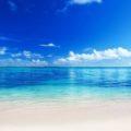 20 любопытных фактов о Мировом океане
