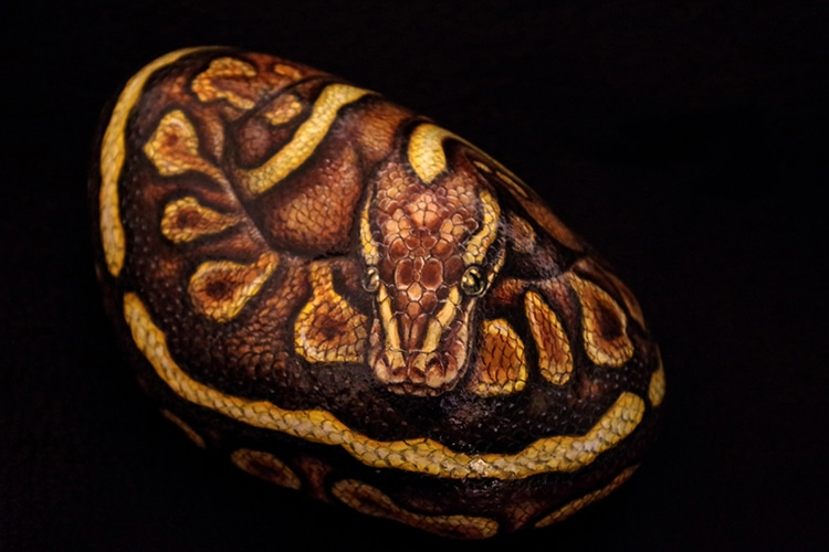 Природа на ладони: художница превращает камни в очаровательных животных