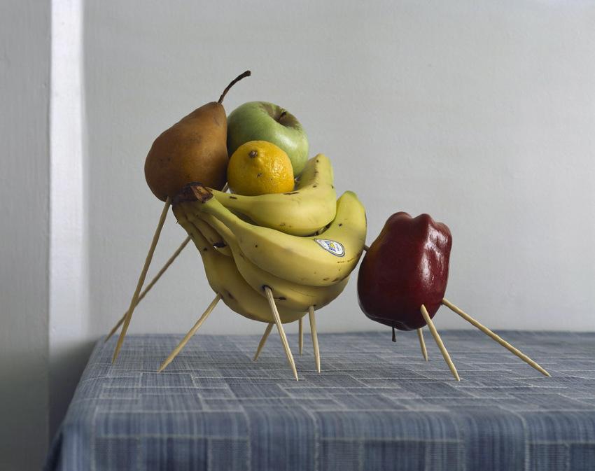 Занимательные инсталляции в фотографиях Маурисио Алехо