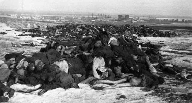 Падшие немецкие солдаты за пределами Сталинграда