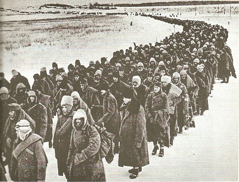 Немецкие, итальянские, венгерские и другие военнопленные под Сталинградом