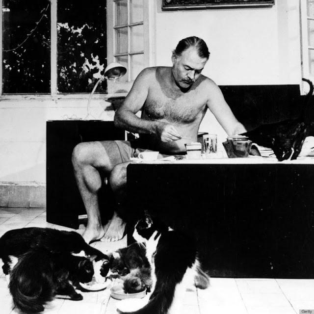 Старинные фотографии Эрнеста Хемингуэя с его кошками