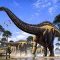 25 увлекательных фактов о динозаврах