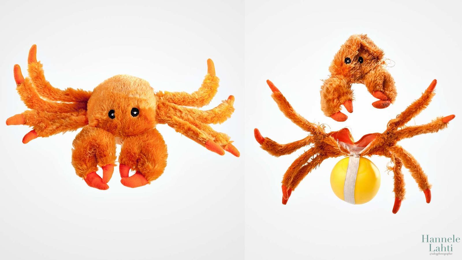 До и после: что вытворяют собаки со своими игрушками