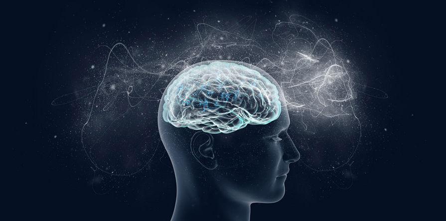 20 увлекательных фактов о человеческом мозге