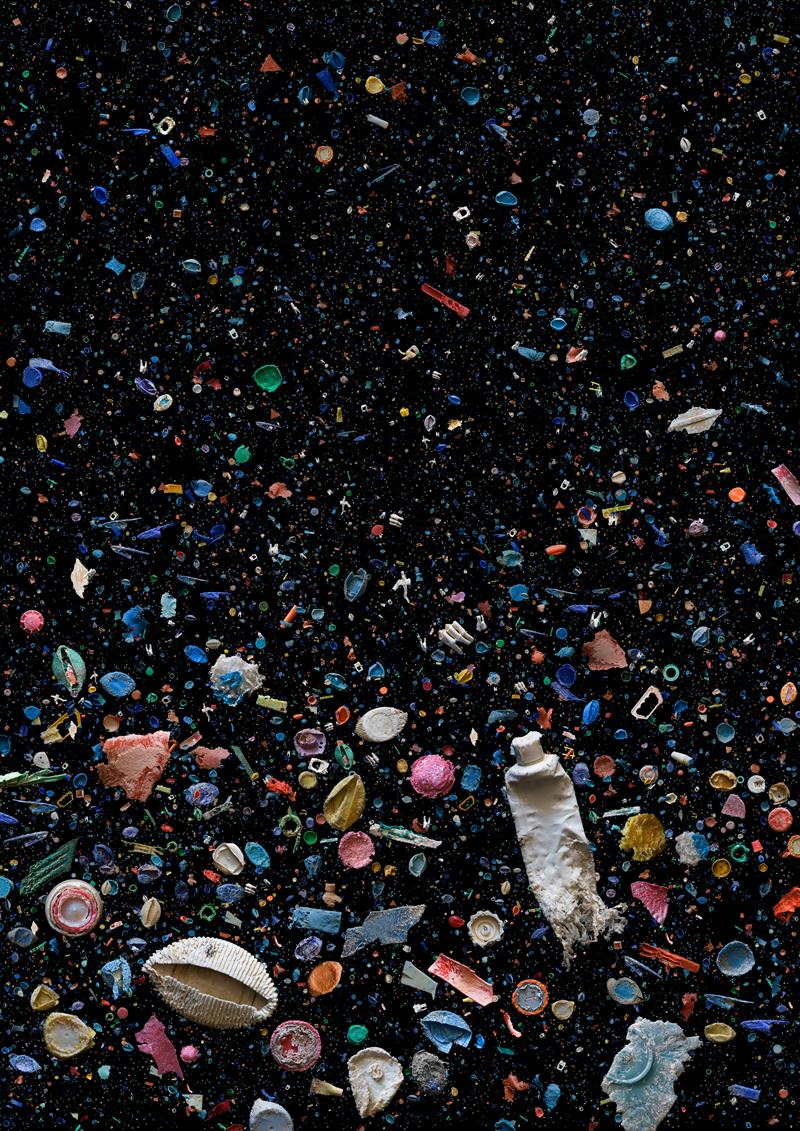 Океанический мусор после попыток морских животных разжевать его