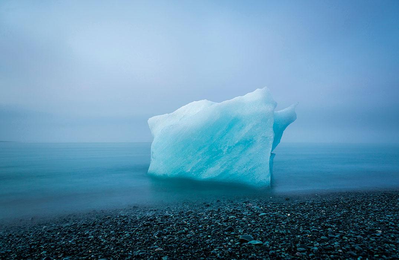2-е место конкурса «Охрана природы 2018»: фотографAndre Mercier, США